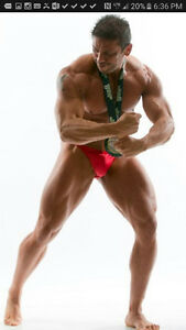 Nutritional coaching/gain muscle/fitness competition Peterborough Peterborough Area image 6