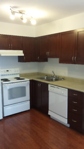 1 Bedroom Condo - Gas, Power and Water INCLUDED