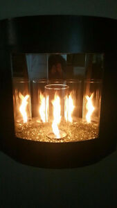 Indoor/outdoor Gel Fuel Fireplace Kitchener / Waterloo Kitchener Area image 3