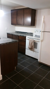 Newly reno basement suite available
