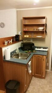Awesome Large One Bedroom Now Available in Avondale St. John's Newfoundland image 3