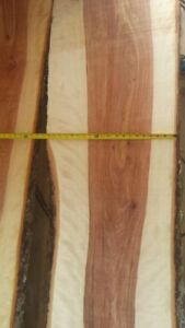 Highly figured curly yellow birch