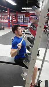 28-DAY TITAN CHALLENGE! 10 sessions only $30 per session! Kitchener / Waterloo Kitchener Area image 1