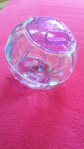 Small animal (mouse, hamster, gerbil) running wheel and ball