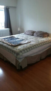 200ft2 - March 1st - Nice large furn room in safe character home