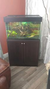 Aquarium 25 gallon fluval