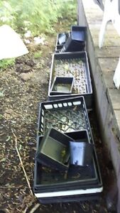 flower pots and seedling tray