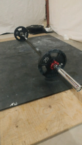 Barbell & Plates