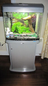 20 gallons JEBO aquarium with stand DELIVERY available