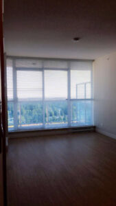 High rise condo for rent !