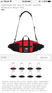 Supreme x The North Face Leather Mountain Waist Bag Red