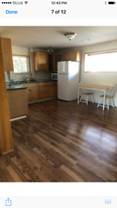 Beautiful Clean One Bedroom Daylight Suite Available May 15th