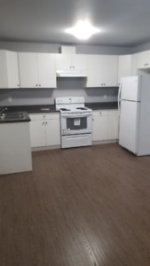 Basement for rent with laundry! (Two bedrooms and One washroom)