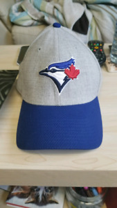 Blue Jay's hat.