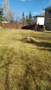 Airdrie Spring Clean Up & Lawn Care