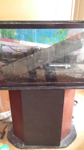 29 gallon Aquarium Fish Tank and Stand
