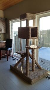 kitty condo for sale