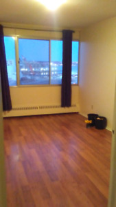 Large room in Apartment in the South End for Jan 1st