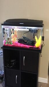 Fish tank with accessories.