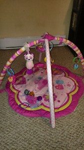 Activity/Play Mat