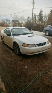 1999 ford mustang for sale or trade for a car