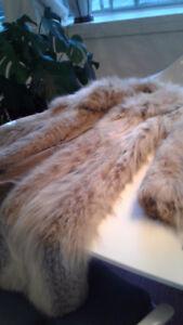 Manteau Lynx