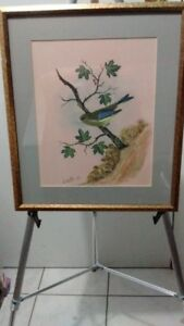 """Old Water Colour Painting Bird, Signed """" W. HusTon 83"""""""