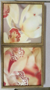 Two floral prints with frames
