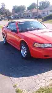 2001 Mustang Convertible V6 Auto