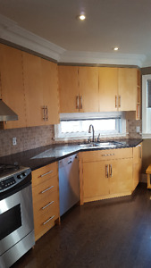 Kitchen Cupboards, Drawers, Pantry and Granite Countertops