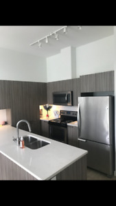 2 bedroom apartment for sublet in Wesbrook Village, UBC