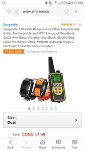 2 collar dog trainer with remote