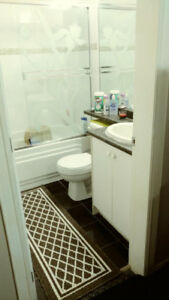 2 bedroom ground level basement suite available at North Delta