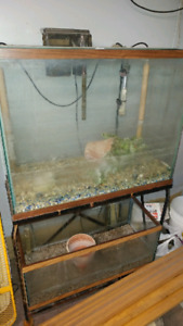 40gallon tall and 25gallon aquariums with stand