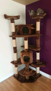 Cat tree - moving must sell