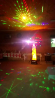 DJ services $475 a night with amazing sound, huge light show.