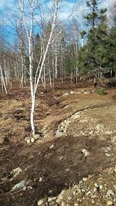 beaux terrains a lac kenogami Saguenay Saguenay-Lac-Saint-Jean image 7