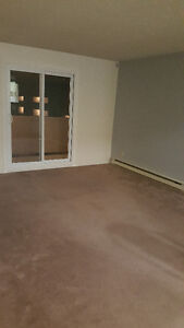 Room for rental in 2-Bed apartment Kingston Kingston Area image 3