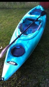 Kayak wanted