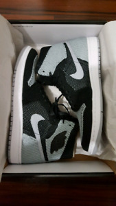 Air Jordan 1 Retro High Flyknit Shadows deadstock size 11