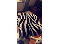 Zebra Print Throw & 3 Cushion Covers NEW!