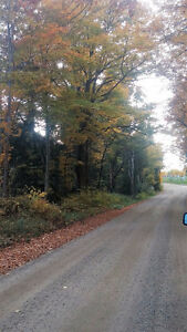 N. of Bancroft 27 acres of Well Treed Land on Serviced Road