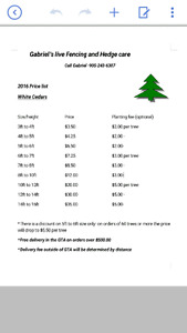 Hedging cedars for sale ( plantings available)