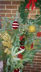 Out side Christmas decorations  Windsor Region Ontario image 1