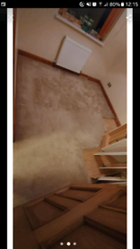 Carpet from 4 bedrooms from £35