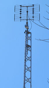 Antenna Tower TV HD, Tour Antenne TV HD 40'  Internet & Wifi West Island Greater Montréal image 5