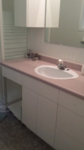 Vanity, sink, moen faucet and light