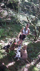 Dog Walker Recommended By the Comox Valley Dog Whisperer