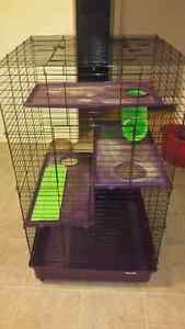 Ferret /Rat cage  Kingston Kingston Area image 1