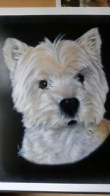 """West Highland Terrier """"WESTIE"""" print"""